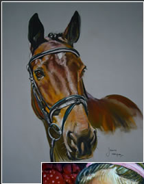 Pastel portrait of horse by Jenny Morgan